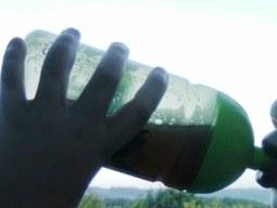Trinkflaschen und Brotdosen gesundheitsgefährdend?